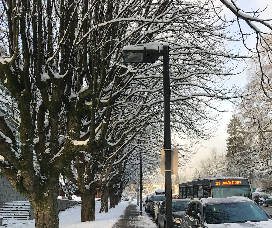 Central Lonsdale North Vancouver Snowing Outside January 2020
